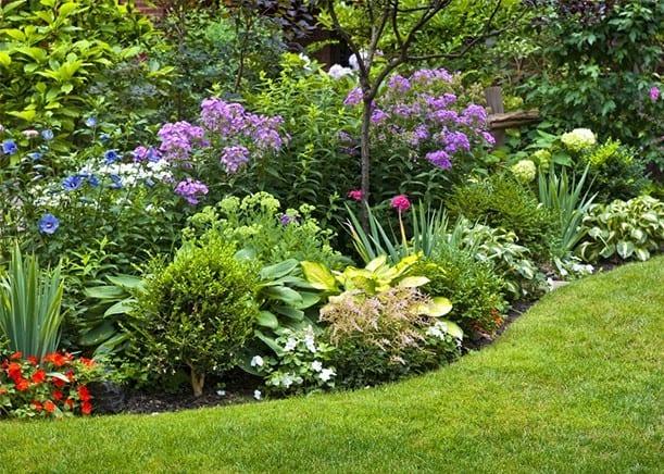 Farby v záhrade