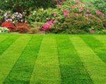 lacný záhradný dizajn